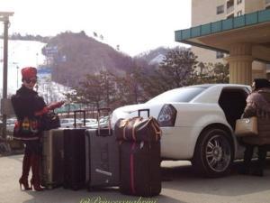 Fancy Traveller
